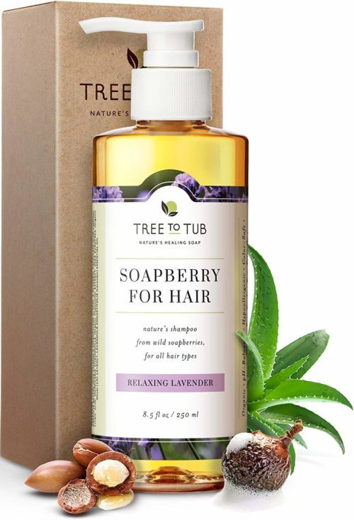 Organic Argan Oil Shampoo for Dry Hair and Scalp