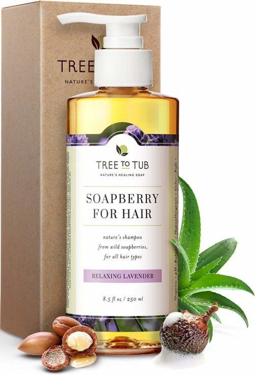 Organic Argan Oil Shampoo for Dry Hair and Scalp