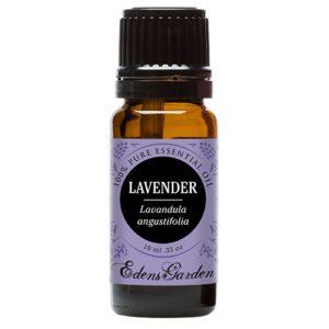 Edens Garden Lavender Essential Oil